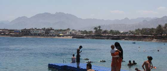 Diving Centres in Dahab